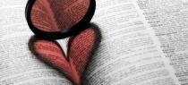 book-58942